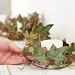 Factory-Direct-Craft-12-Feet-of-Artificial-English-Ivy-Leaf-Garland-for-Home-Decor-and-Displaying