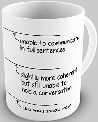 Funny You May Speak Now 11OZ Coffee Mug Novelty (Best Jobs With Criminal Justice Degree)