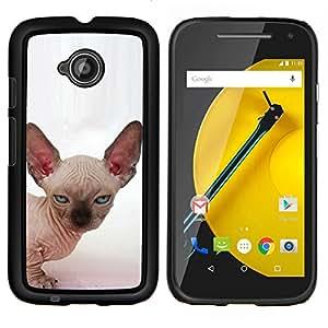 EJOOY---Cubierta de la caja de protección para la piel dura ** Motorola Moto E2 E2nd Gen ** --Gato Sphynx Peterbald Donskoy