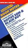 Native Son, Richard Wright, Michael Gallantz, 0812035291