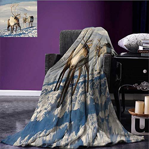 (Winter Lightweight Blanket Reindeers in Natural Environment Tromso Northern Norway Caribou Antler Wildlife Print Summer Quilt Comforter Bed or Couch 70