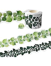 65.6ft Eucalyptus Die-Cut Bulletin Board Border for Classroom Decoration, 2 Sided Printed Tropical Leaves Vine Trim Border Decor Wall Decals for School Family Party Bulletin Chalkboard