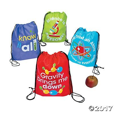Fun Express Science Party Drawstring Backpacks - 12 ct (Birthday Party Express)