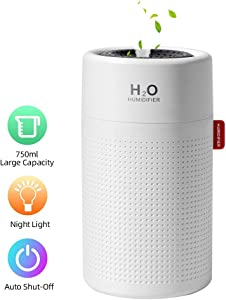 Welltop Portable Mini Humidifier USB Personal Cool Mist Humidifier Desktop Humidifier with 7 Colors Night Lights for Baby Bedroom Office Travel Auto Shut Off 2 Mist Modes Quiet Operation(750ML White)