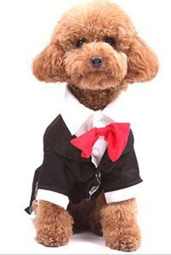 icegrey Oscar Formal esmoquin disfraz de perro mascota traje con ...