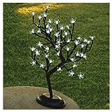 18'' Wht 48Lt Bonsai Tree