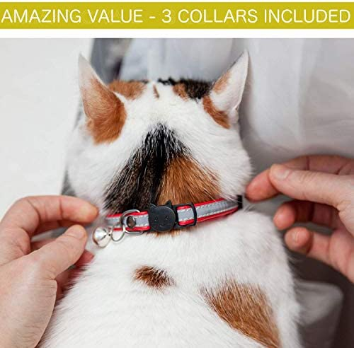 Leather Cat Collar Reflective, Set of 3, Plus Lucky Charm Pendant, Breakaway with Bell, Puppy Small Dog Collars, Kitty Collars, Pet Collar, Free Replacement