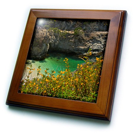 "3D Rose China Cove - Beach - Point Lobos State Reserve - Carmel - California - USA Framed Tile 8"" x 8"""