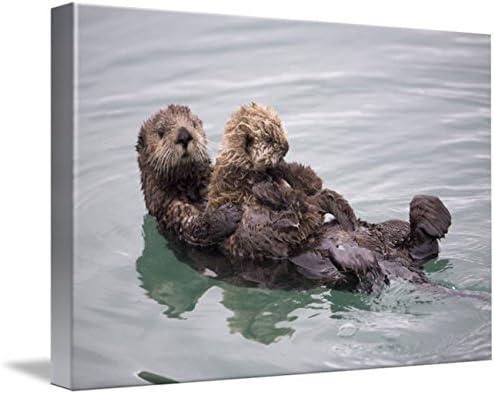 Art print POSTER CANVAS Sea Otter