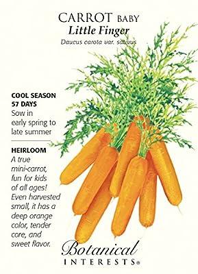 Baby Little Fingers Carrot Seeds 1.5 grams - Heirloom