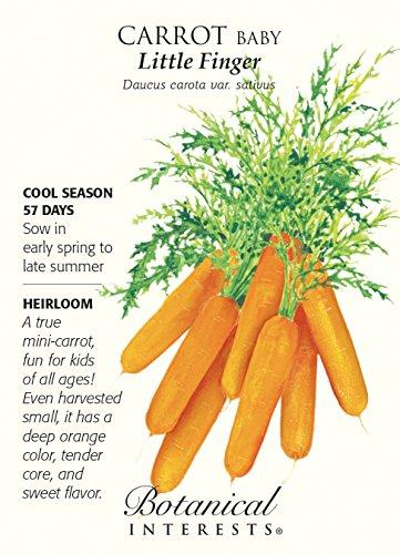 Baby Little Fingers Carrot Seeds 1.5 grams - ()