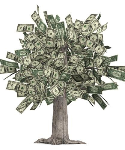 - MONEY TREE GLOSSY POSTER PICTURE PHOTO grows dollars bills currency cash