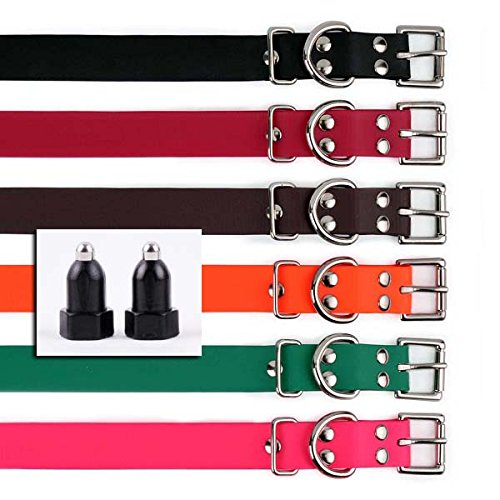 E Collar Large Receiver Models 700, 800,1200-1  Inch Biothane Buckle Strap & Long Black Contact Points Kit- Green Strap