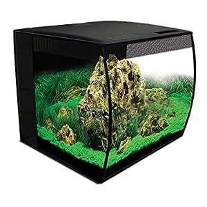 amazon com fluval flex 57 15 gallon nano glass aquarium kit