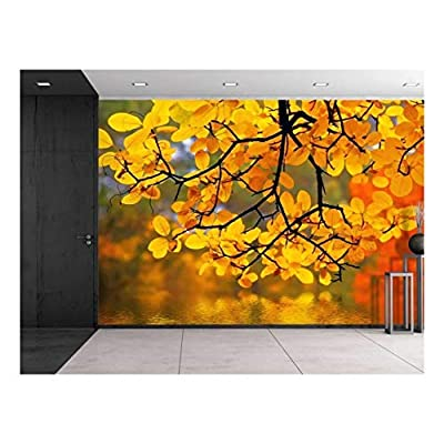 Yellow Branch Trees Framing a Lake - Wall Mural, Removable Sticker, Home Decor - 66x96 inches