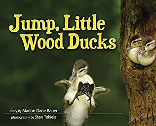 book cover of Jump, Little Wood Ducks