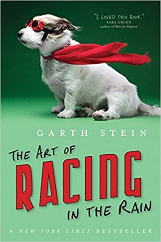 book about a dog named enzo