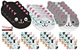 Cats Party Purr-Fect Supplies Bundle Pack for 16 guests (Plus Party Planning Checklist by Mikes Super Store)