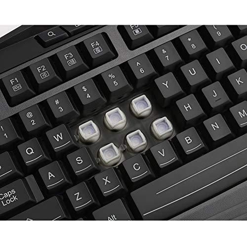 c5dda4f0e7c Redragon K503 RGB Gaming Keyboard, RGB Backlit USB Gaming Keyboard with 8  Dedicated Multimedia Keys, Total 112 Keys, Full Size Keyboard