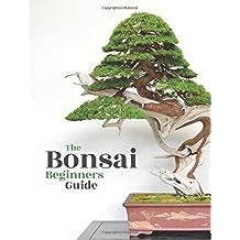 Bonsai: The Beginners Guide