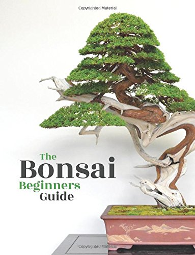 Bonsai The Beginners Guide [Empire, Bonsai - Jonker, O.] (Tapa Blanda)