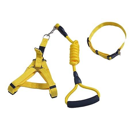 Conjunto de arnés y collar para perros, exterior ajustable y Heavy ...