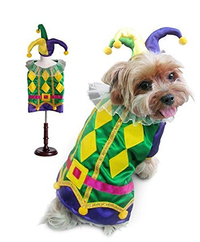 Colorful Harlequin Mardi Gras Jester Dog Costume Diamond Ruffle Collar Shirt (Size 5)