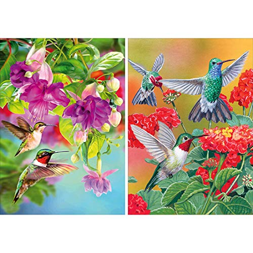 Yomiie 2 Pack 5D DIY Diamond Painting Birds Kit, Hummingbird Embroidery Cross Stitch Craft Arts Full Drill Piant with Diamond Friarbird Gift Idea for Women Home Decor 12x16 inch (30x40 cm)