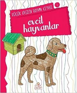 Evcil Hayvanlar Kucuk Kasifin Boyama Kitabi 1 Nilufer Taktak