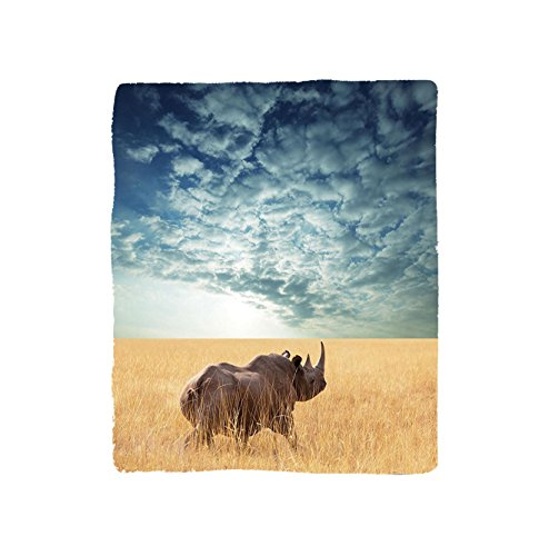 VROSELV Custom Blanket Safari Collection Rhino Rhinoceros Sun Shining Through Cloudy Sky Grassland Autumn View Picture Bedroom Living Room Dorm - Custom Frame Metal Ladder