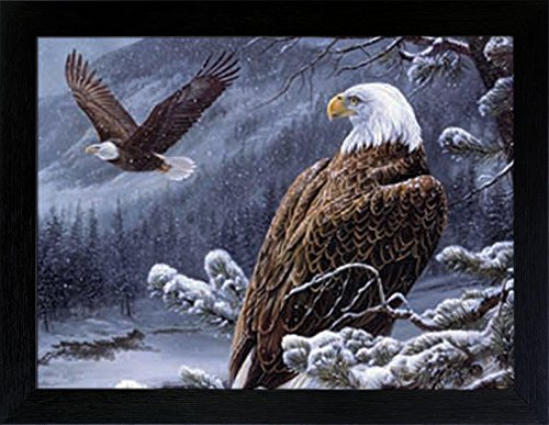 3D Lenticular Picture Poster Artwork Unique Wall Decor Holographic Pictures Optical Illusion Flipping Images (With Frame, Eagles)