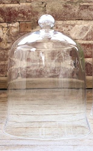 Park Hill Collection Extra Large Bell Jar Glass Dome Plant Terrarium Centerpiece Display ()