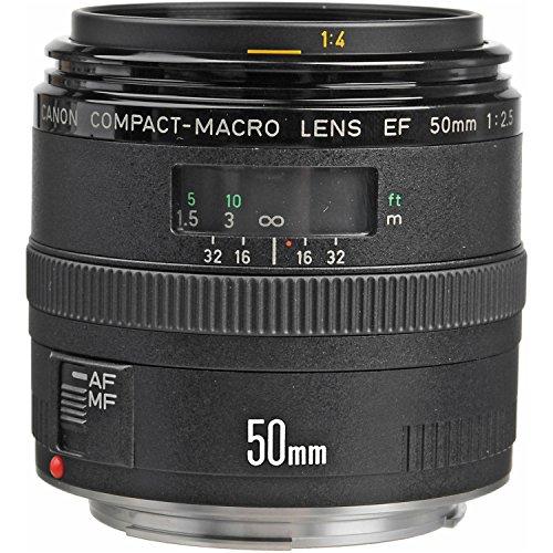 Canon 50mm f2.5 Macro