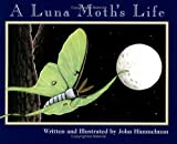 A Luna Moth's Life (Nature Upclose)