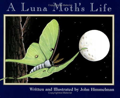 A Luna Moth's Life (Nature Upclose) by Children's Press(CT)