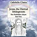 Jesus, the Eternal Bridegroom: The Forbidden Abyss, Part Two Audiobook by Gabrielle Chana, Gail Chord Schuler Narrated by Gail Chord Schuler
