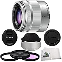 Panasonic 35-100mm f/4-56 Interchangeable Zoom Lens (Silver) (White Box), 4 Piece Essential Accessory Kit