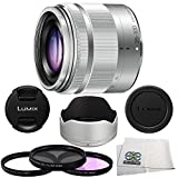 Panasonic 35-100mm f/4-56 Interchangeable Zoom Lens (Silver) (White Box), 4 Piece Essential Accessory Kit - International Version (No Warranty)