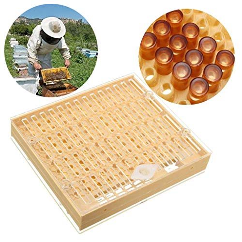 (♛Euone Home ♛Clearance♛, Beekeeping Complete Cell Cup kit Cultivating Box Catcher Cage Beekeeping Apicult)