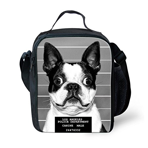 HUGS IDEA Boston Terrier Printed Funny Thremol Lunch Boxes Tote Handbag Cooler Bag Food Container Lunchbag Tote for Kids Girls Boys