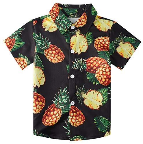 (RAISEVERN Little Boy's Button Down Shirts Hawaiian Pineapple Short Sleeve Cartoon Tropical Black Dress Shirt for Toddler (2-3T))