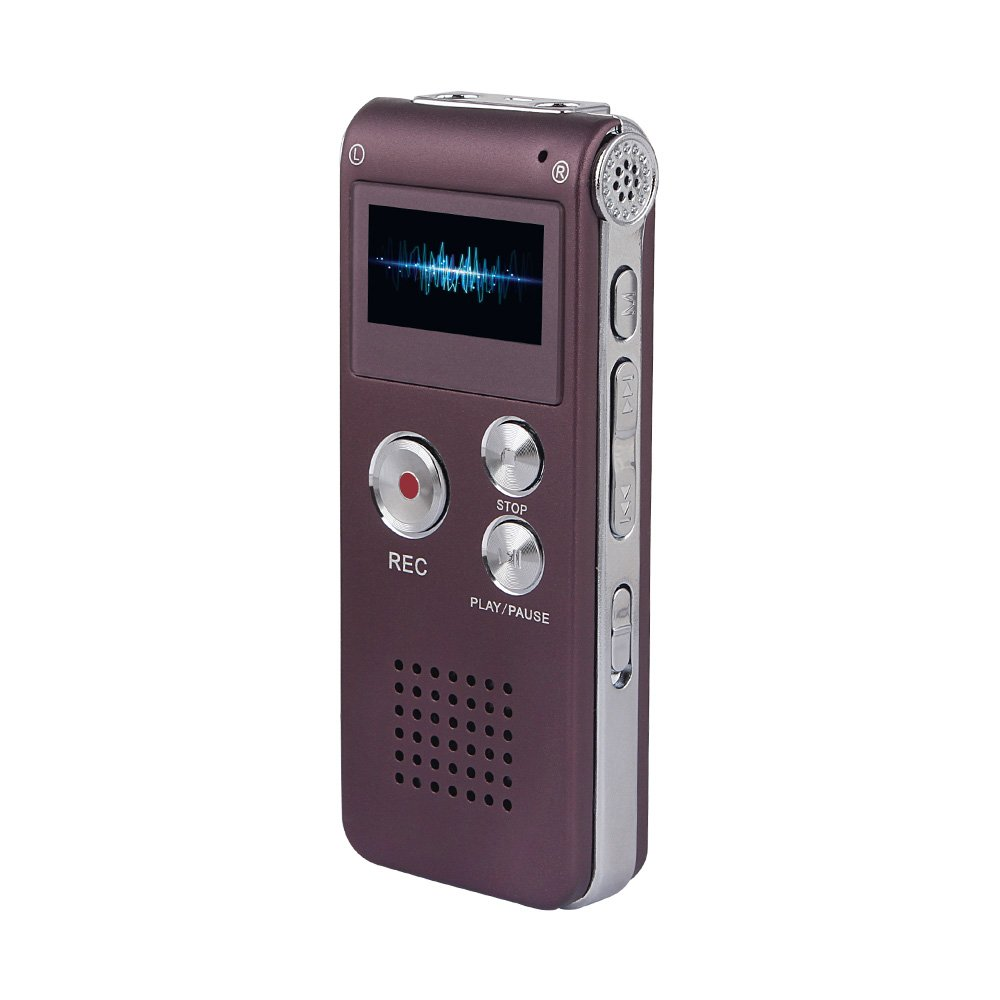 ACCE Deal Purple Rechargeable and Multifunctional Digital Voice Recorder with Mini USB Port, MP3 Music Player & Dictaphone,