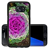 target crop top - Luxlady Premium Samsung Galaxy S7 Edge Aluminum Backplate Bumper Snap Case IMAGE ID 26202300 Top view of beautiful purple cabbage at a farm