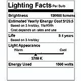 Philips 32150-5 1000W High Intensity Discharge
