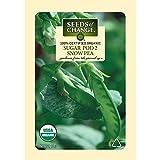 Seeds of Change Certified Organic Pea, Sugar Pod 2 - 12 grams, 50 Seeds Pack