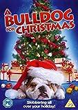 A Bulldog For Christmas [Import anglais]