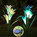 Solar Garden Stake Lights, ZALALOVA 2 Pack Solar Flower Lights Outdoor Multicolor Changing Waterproof LED with 8 Solar Lily Flowers Lamps for Garden Lawn Patio Yard Path Backyard (Blue and White) Review