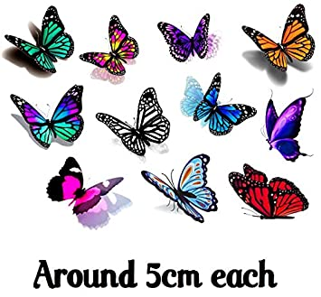 cff3a1c426bc3 Amazon.com : Butterfly Collection (Butterfly 3d Temporary Tattoos) : Beauty