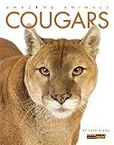 Amazing Animals: Cougars, Kate Riggs, 0898129265