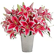 Stargazer Barn - Large Bouquet of Stargazer Lilies with Galvanized French Bucket Style Vase - Farm Fresh